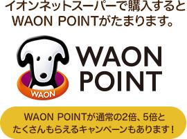 イオンネットスーパーで購入するとWAON POINTがたまります。WAON POINTが通常の2倍、5倍とたくさんもらえるキャンペーンもあります!