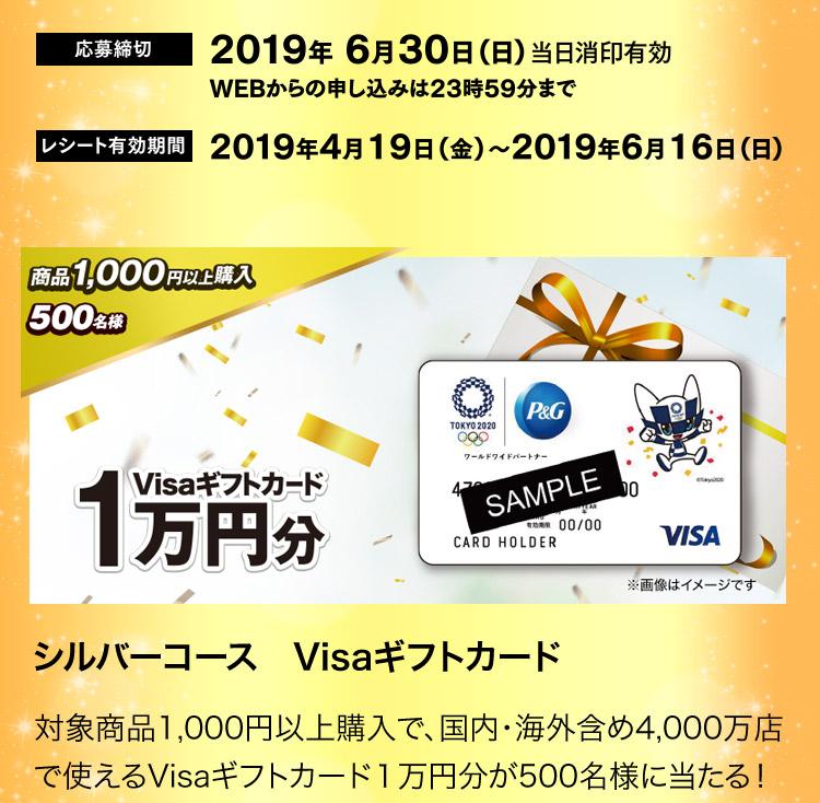 シルバーコース  Visaギフトカード