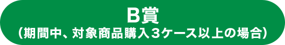 B賞(期間中、対象商品購入3ケース以上の場合)