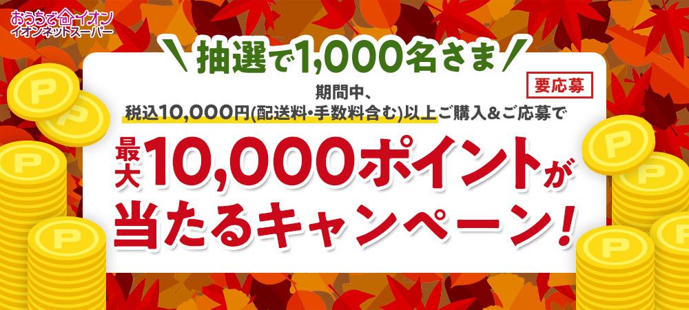 おうちでイオン イオンネットスーパー \抽選で1,000名さま/期間中、税込10,000円(配送料・手数料含む)以上ご購入&ご応募で 最大10,000ポイントが当たるキャンペーン! 要応募