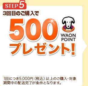 3回目のご購入で500WAON POINTプレゼント!