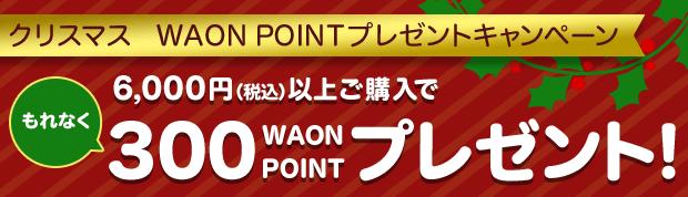 クリスマス WAON POINT プレゼントキャンペーン