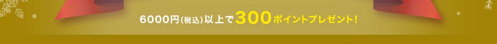 6000円(税込)以上で300ポイントプレゼント!